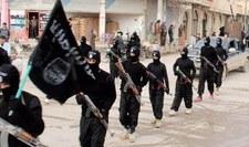 Kanada kończy naloty na dżihadystów w Syrii i Iraku