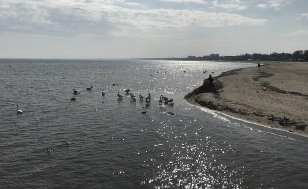 Kąpieliska w Trójmieście będą bezpieczne? Sanepid: Proszę nam pozwolić weryfikować