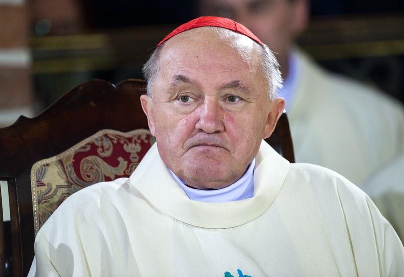 Kardynał Kazimierz Nycz /Bartosz Krupa /East News