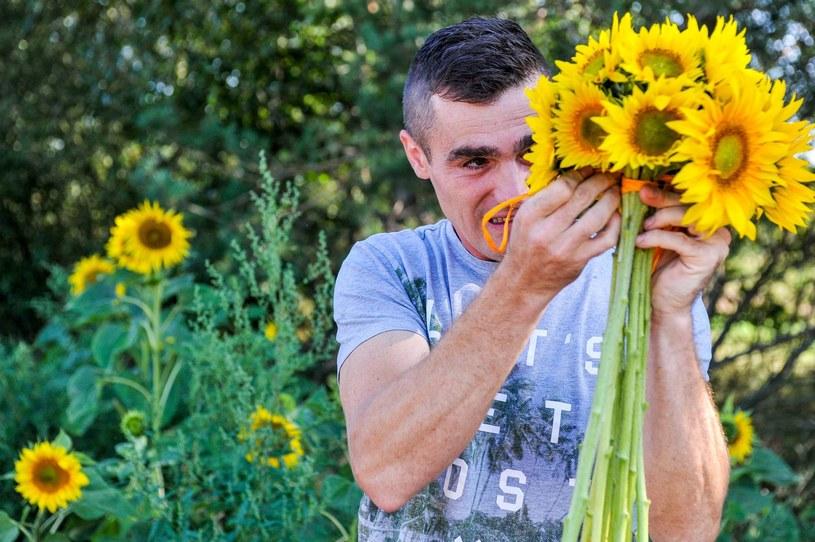 Karol przygotowuje bukiet ze słoneczników dla Jagody /TVP