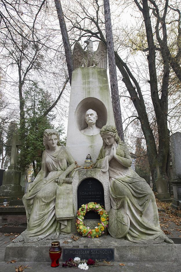Karol Szajnocha zmarł 10 stycznia 1868 roku we Lwowie. Został pochowany na Cmentarzu Łyczakowskim przy głównej alei /Andrzej Sidor /Agencja FORUM