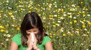 Katar sienny - pierwszy sygnał alergii