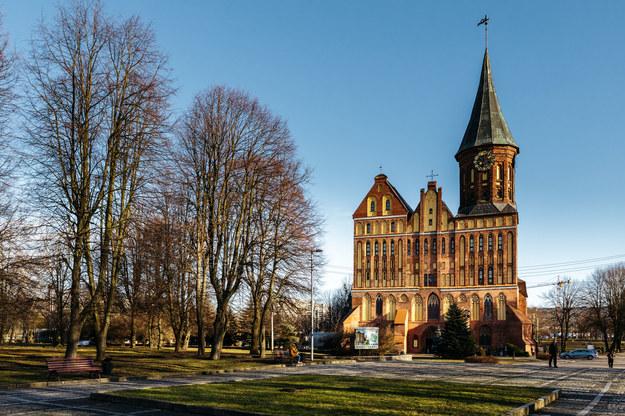 Katedra w Królewcu /123/RF PICSEL