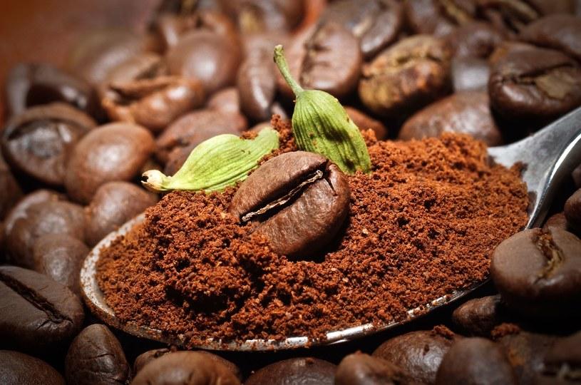 Kawa i zielony kardamon /123RF/PICSEL