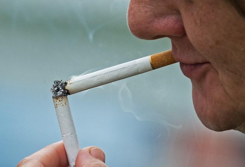Każdego roku palenie tytoniu zabija 6 mln osób /AFP