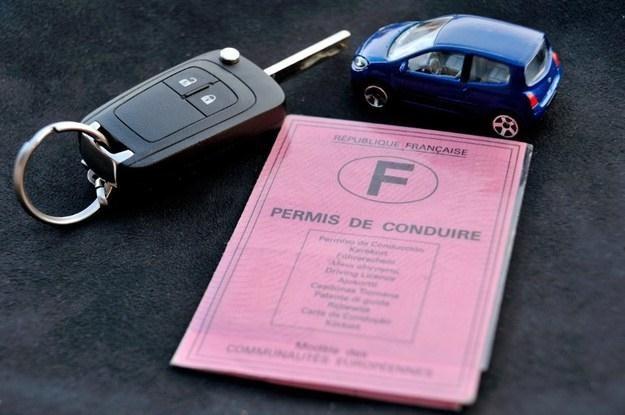 Każdy kraj ma własne regulacje dotyczące praw jazdy /AFP
