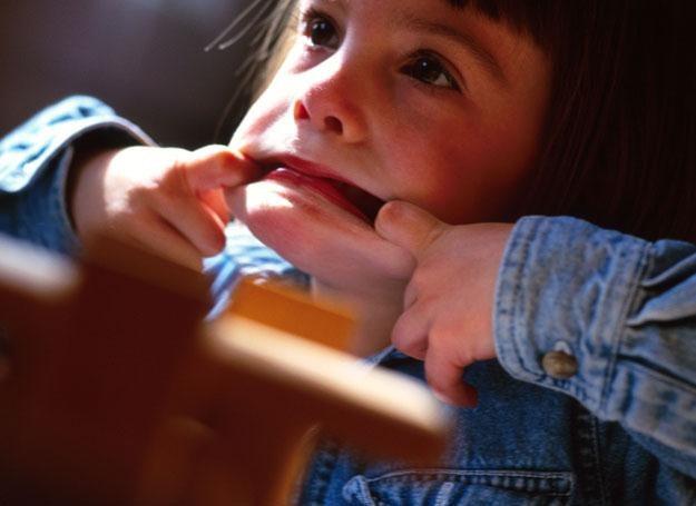 Każdy maluch potrzebuje granic, żeby zdrowo i szczęśliwie rosnąć /ThetaXstock