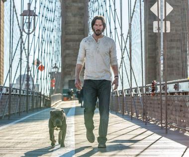 """Keanu Reeves o filmie """"John Wick 2"""": Więcej akcji, więcej dramatu"""