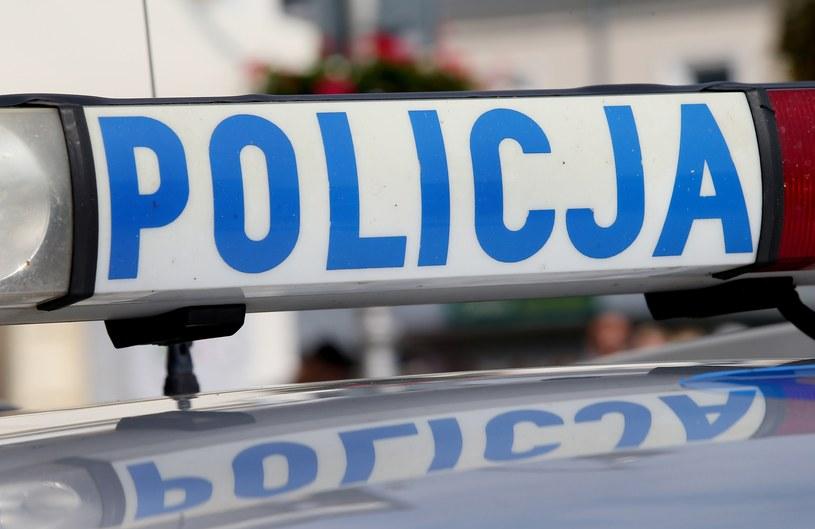 KGP: Wyjaśniamy kto polecił badać wariografem zgłaszających kradzieże aut /Damian Klamka /East News