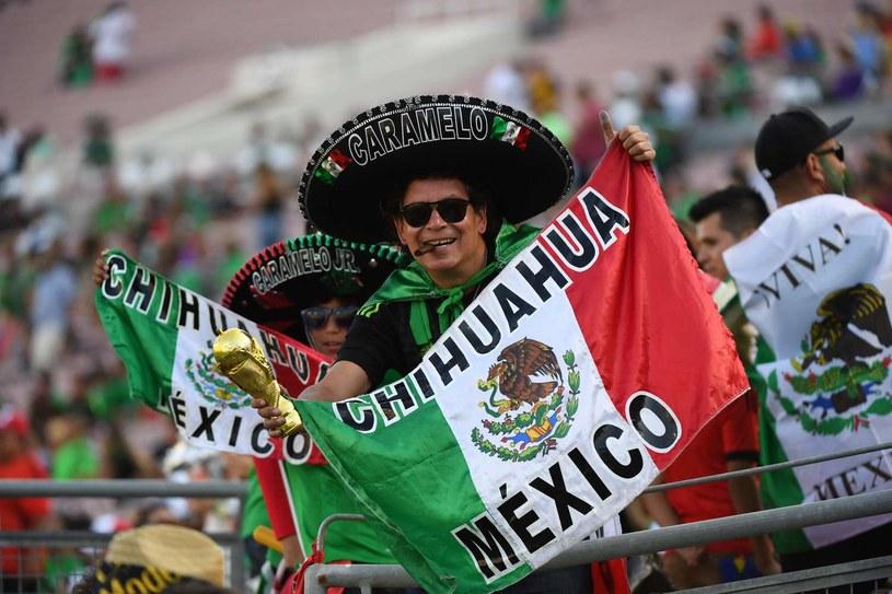 Kibice reprezentacji Meksyku /AFP