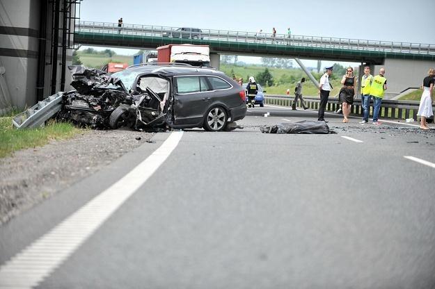 Kierowcom prezentuje się m.in. drastyczne zdjęcia / Fot: Kamil Kiedrowski /Reporter
