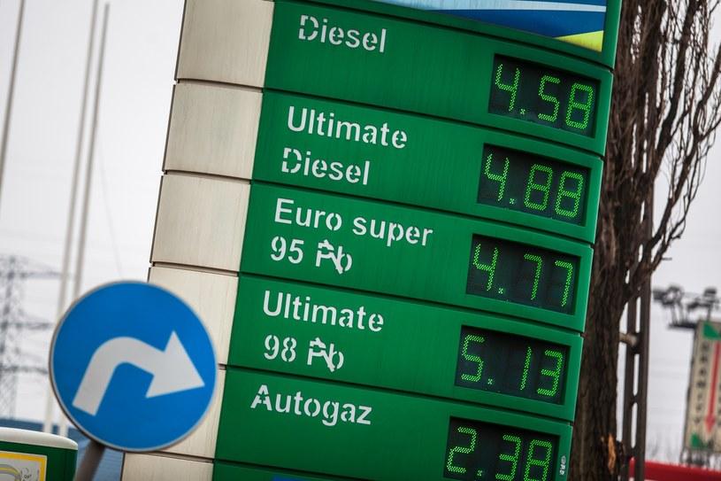 Kierowcy muszą się przygotować na drastyczny skok cen paliw - o około 20 groszy /Adam Burakowski /Reporter