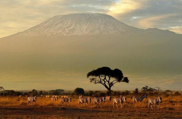 Kilimandżaro to najwyższy szczyt w Afryce /AFP