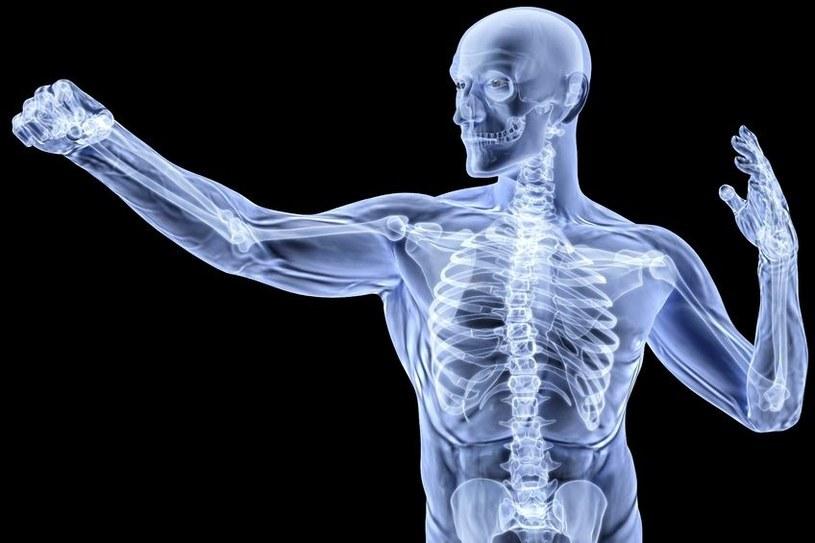 Kinaza Lkb1 jest potrzebna we wzroście kości, a jej niedobór może powodować raka /©123RF/PICSEL