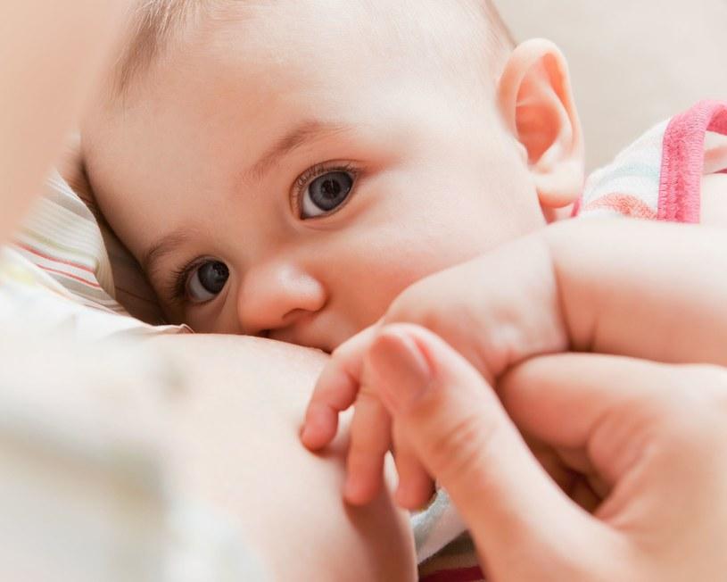 Kobiece mleko zawiera unikalne składniki w odpowiednich ilościach oraz proporcjach /123RF/PICSEL