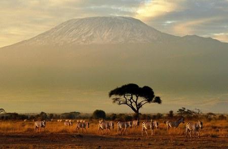 Kobiety chcą rozegrać mecz piłkarski na szczycie Kilimandżaro