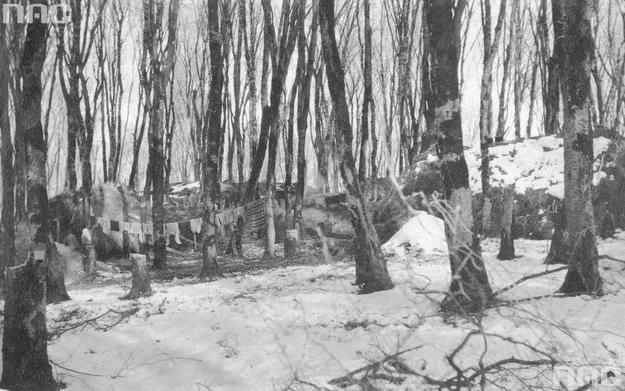 Koczowisko uchodźców na Wołyniu podczas I wojny światowej. Szałasy uchodźców w lesie /Z archiwum Narodowego Archiwum Cyfrowego