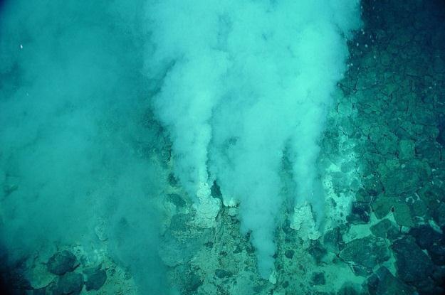 Kominy hydrotermalne źródłem złota? /materiały prasowe