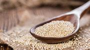 Komosa ryżowa - matka zbóż