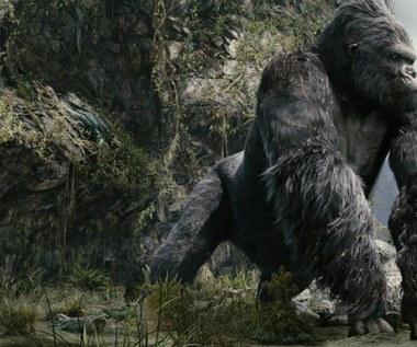 """""""Kong Wyspa czaszki"""""""