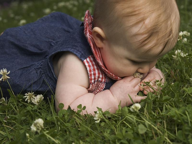 Kontakt z przyrodą rozbudza ciekawość świata, stymuluje zmysły  /ThetaXstock