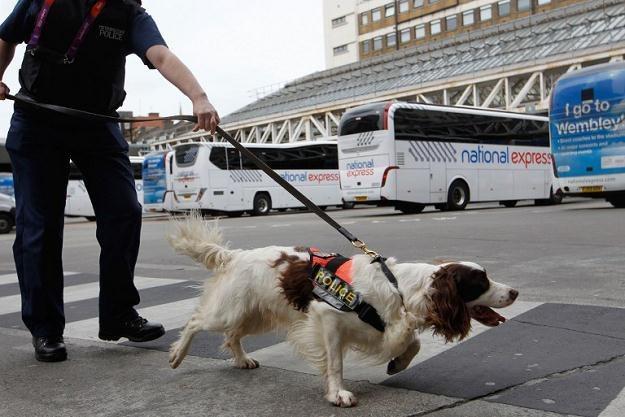 Kontrola policyjna na Victoria Station /AFP/Agencja FORUM