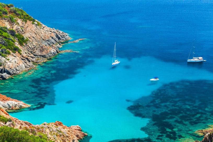 Korsyka to wyspa wina, miodu, kasztanów i wędlin /123RF/PICSEL