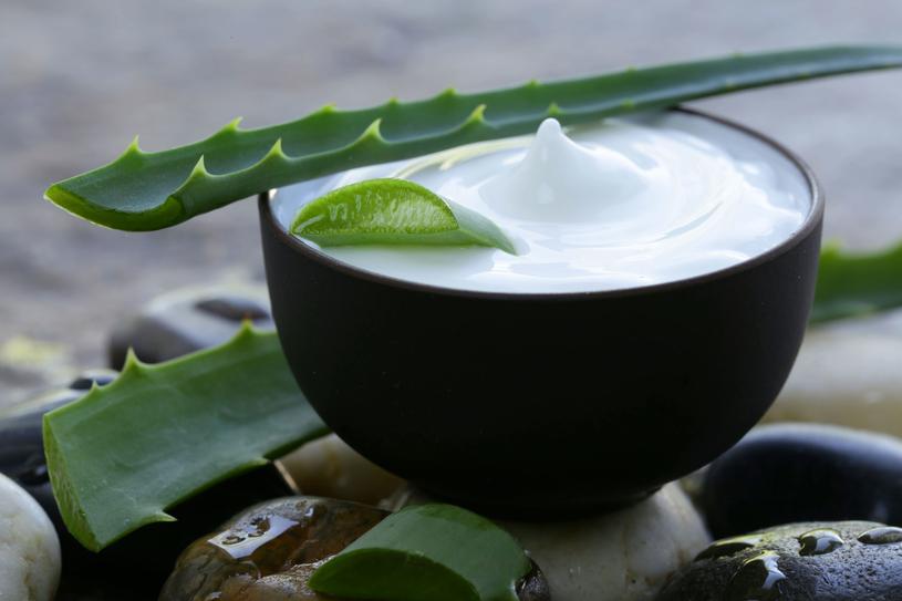 Kosmetyki z aloesu doskonale sprawdzają się przy problemach skóry /Picsel /123RF/PICSEL