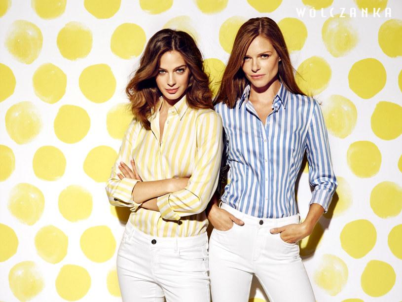 Koszule damskie Wólczanki w kolorowe paski /materiały promocyjne