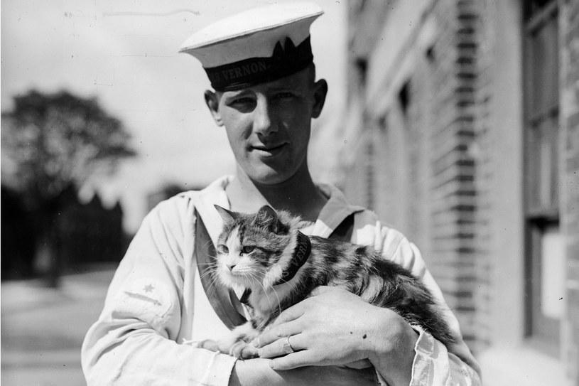 Kot Minnie pracował na statku HMS Vernon, 1931 rok /Getty Images/Flash Press Media