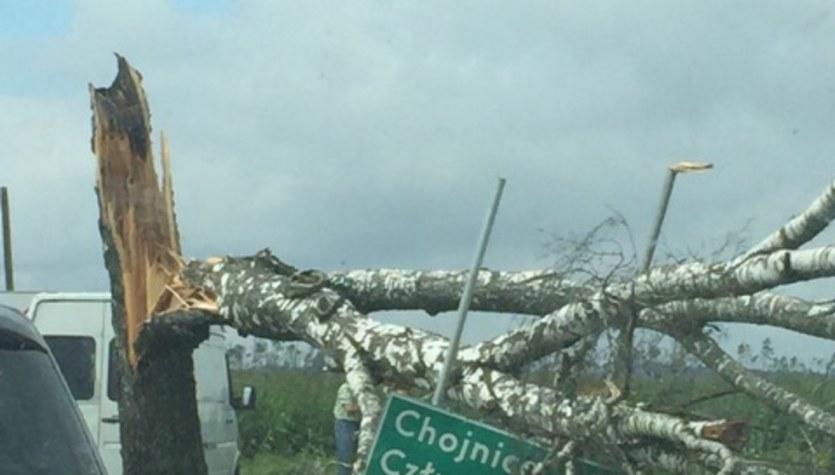 Krajobraz po nawałnicach: Kolejne zdjęcia z Gorącej Linii RMF FM