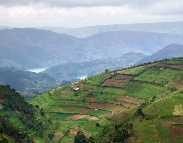 Krajobraz Ugandy /123/RF PICSEL