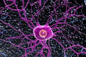 Krew zamieniona w komórki nerwowe