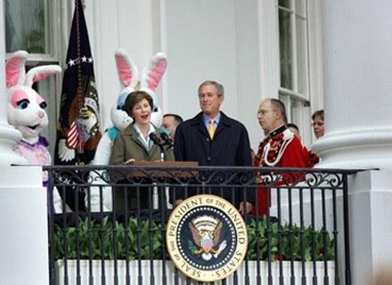 Królik - najsłynniejszy symbol Wielkanocy w USA /AFP