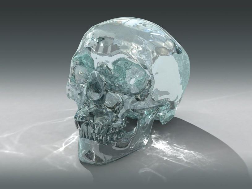Kryształowe czaszki, pozostałość cywilizacji Majów, do dzisiaj fascynują archeologów /©123RF/PICSEL