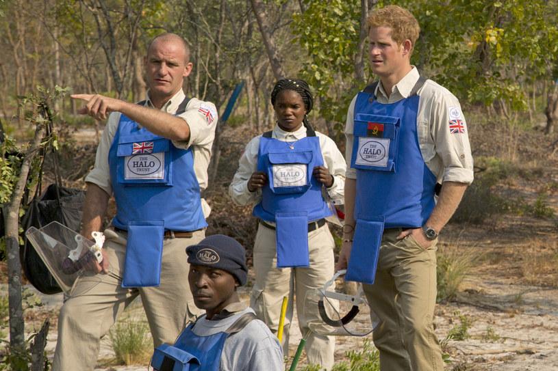 Książę Harry wybrał się do Angoli, by przyjrzeć się pracy przy rozminowywaniu terenów przez organizację non-profit HALO Trust /fot. AFP/HALO Trust /AFP