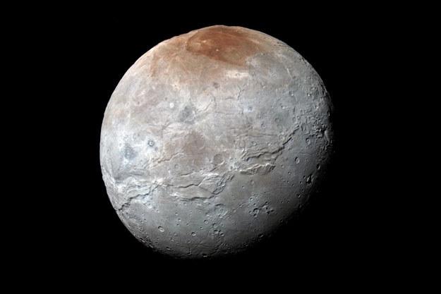 Księżyc Plutona Charon na wysokiej rozdzielczości zdjęciu wykonanym 14 lipca 2015 roku /NASA