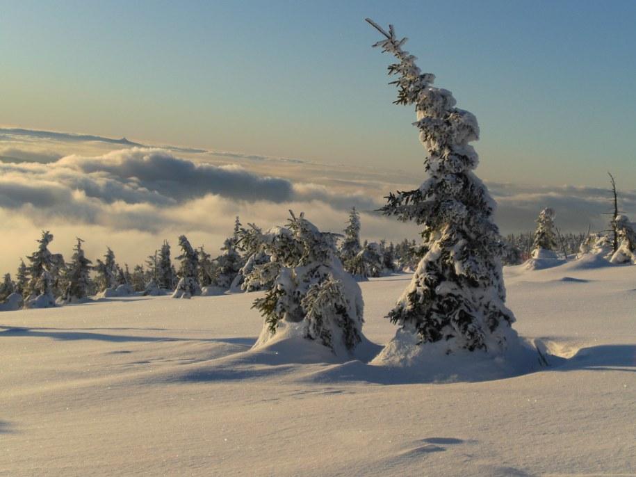 Kto nie tęskni za taką zimą? /Paweł Żuchowski /RMF FM
