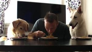 Kto szybciej zje spaghetti?
