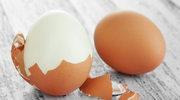 Które jajka są eko?