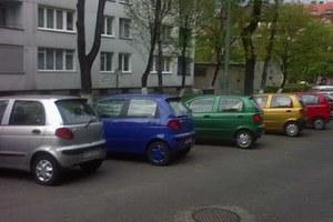 Który najładniejszy? / kliknij /poboczem.pl