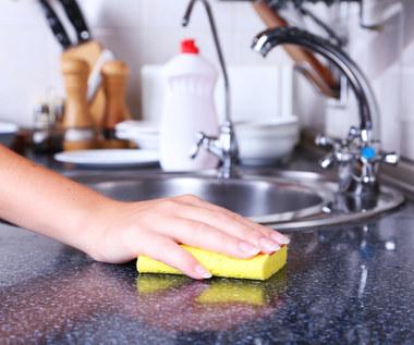 Kuchnia siedliskiem bakterii?