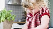 Kuchnia Smyka Alergika - książka kucharska do pobrania!