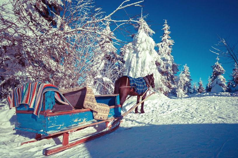 Kulig to jedna z najbardziej popularnych form rozrywki w zimowej scenerii. /Styl.pl/materiały prasowe
