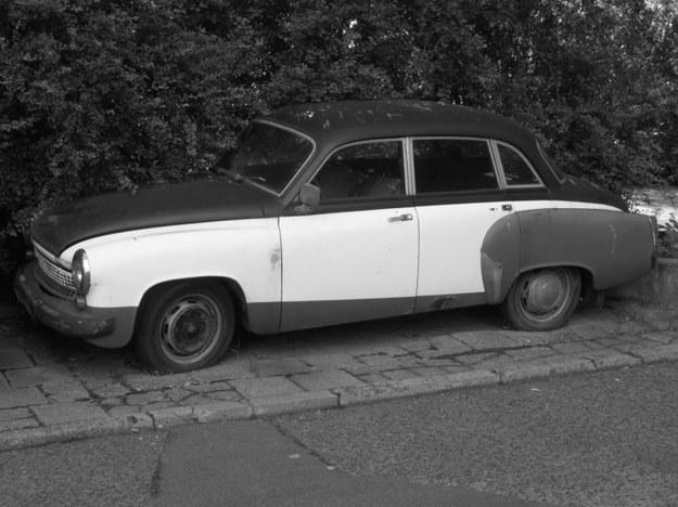 Kultowe auto w krzakach
