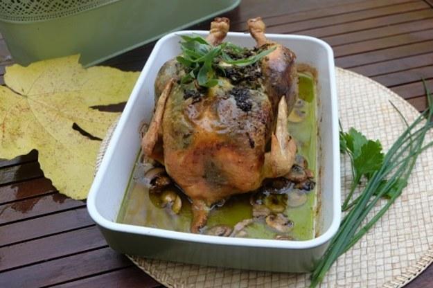 Kurczak i zupa