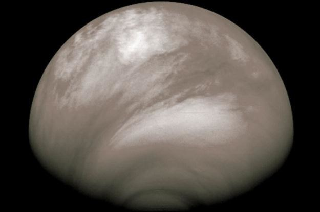 Kwasowe chmury nad Wenus /NASA