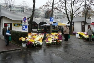 Kwiaty dla inwalidów /poboczem.pl