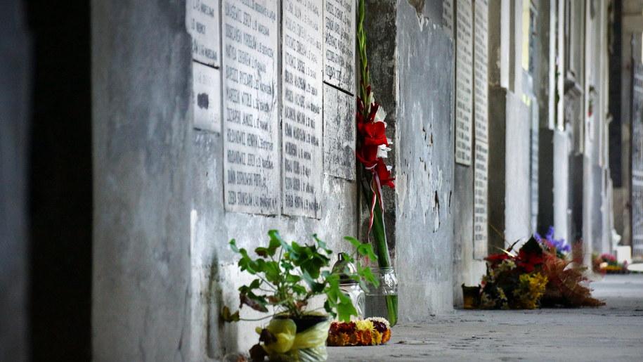 Kwiaty przed tablicą pamiątkową w Ogrodzie Saskim /Michał Dukaczewski /RMF FM