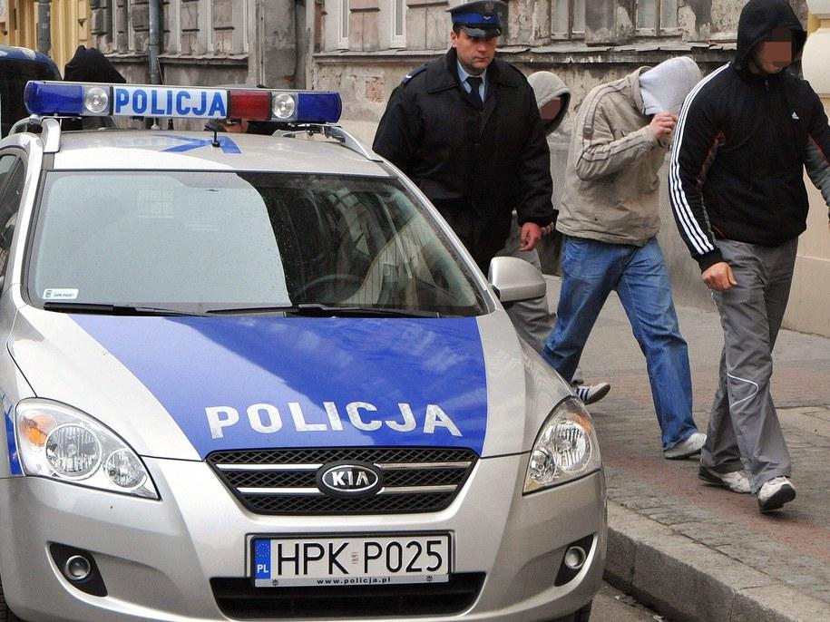 Łącznie zatrzymano 9 osób (zdjęcie ilustracyjne) /Dariusz Delmanowicz    /PAP